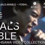 大沢誉志幸1984年のライブ映像